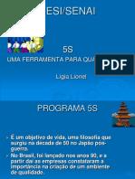 Programa 5s 2