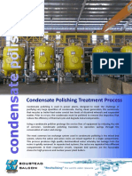 Condensate Polishing.pdf