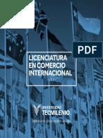 FOLLETO MATERIAS TECMILENIO LCI