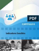 _Sistema de Indicadores Cap2.PDF