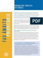 Ordenamiento Forestal FAO