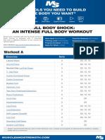 fullbodyshock.pdf