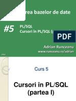 C5-PBD_2018