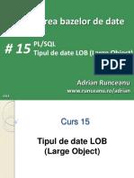 C15-PBD_2018