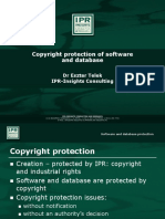 2_Copyright+protection+of+software+and+database_final