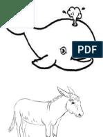 Animales de Regiones