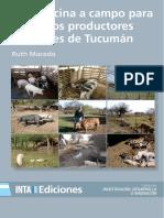 Inta-cria Porcina a Campo Para Pequenos Productores Familiares de Tucuman