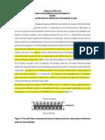 Guia TPractico PAMPA 2019