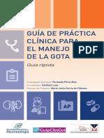 140722-Guia-Rapida-Maquetada-Menarini GOTA.pdf