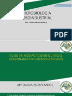 7. Deterioro de Los Alimentos Por Modificaciones Quimicas Por Mo. (1)