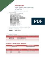 PLANTILLA DE PERFIL DE LA RED.docx