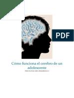 Informe - Cómo Funciona El Cerebro de Un Adolescente