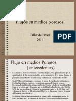 Flujos en Medios Porosos TEF2014