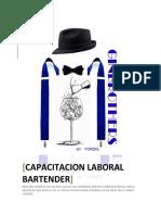 Bartender Teoría