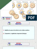 (3)a MITOSIS - Arteaga M. Modif.