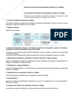 Plan y Programa Anual de Seguridad y Salud en El Trabajo - Resumen