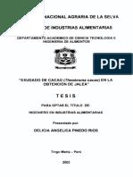 Tesis Obtencion de Jalea de Cacao UNAS 2002