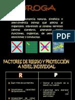 Ex Pod Rogas Nuevo 2