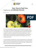 Tomato Fertilizer_ How to Feed Your Plants for the Ultimate Harvest