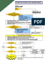 ProtocolSepsis2012(1)