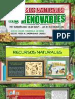 diapositivas de recursos naturales no renvables