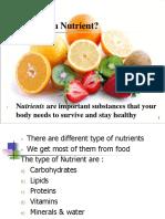 nutrient ppt gcse