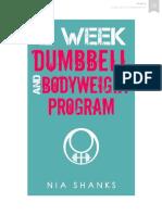 12 Week Dumbbell and Bodyweight Program