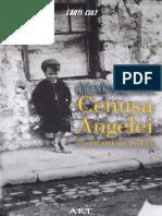 Cenusa Angelei. O Copilarie Irlandeza - Frank McCourt