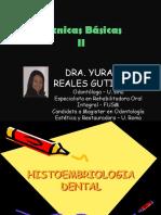 Histomorfologia Dental