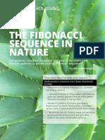 elementary_fibonacci.pdf