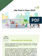Presentacion Paso a Paso 2019