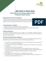 Bases Paso a Paso 2019