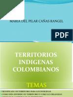 Exposicion Indigenas y Raizales (1)