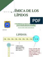 t Lipidos- Oxidacion de Ac. Grasos