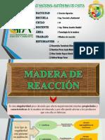 Madera de Reacción EXPO Corregido