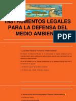 1.INSTRUMENTOS LEGALES PARA LA DEFENSA DEL MEDIO AMBIENTE.pptx