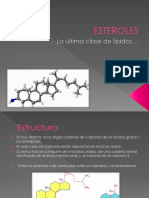 327810320-Esteroles-6-5.pptx