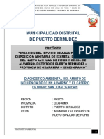 Diagnostico-Ambiental Alvariño - San Juan Pichis.docx