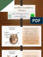 dermovilite 1 1.pptx
