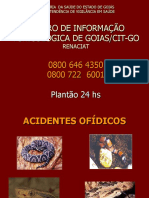ACIDENTES  OFÍDICOS ppt