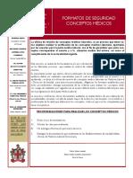 Boletin No 07 Formatos de Seguridad Conceptos Medicos