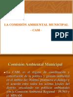 COMISIÓN AMBIENTAL MUNICIPAL