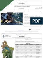 Dirección TécnicaOrganismo de Cuenca Río Bravo