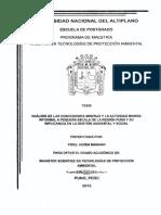 ANÁLISIS DE LAS CONCESIONES MINERAS Y LA ACTIVIDAD MINERA.pdf