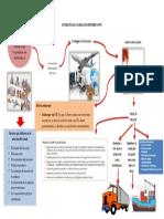 Estrategia Global de Distribución