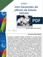 Guía Normas Generales Auditoria de Estado