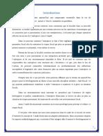 Exposé Sur l'Audit Fiscal (1)