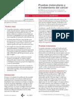 FS31S Cancer Molecular Profiling Spanish