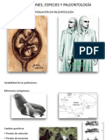 2° Clase de Paleontología.pptx