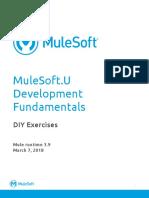 mulesoft exercises